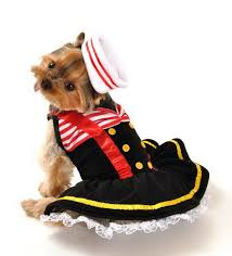 Halloween Costumes Dogs Sailor Halloween Dog Costume Costumes Dogs