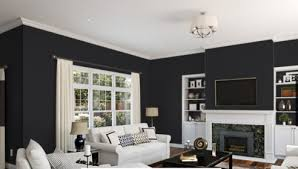 Black Interior Paint 6258 Tricorn Black Interior Exterior Paint