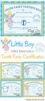best 25 tooth fairy certificate ideas on pinterest tooth fairy