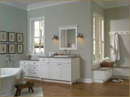 Master Bathroom Remodeling Ideas Colors Light Gray Paint Color Sea Level Cil House Paint Inspiration