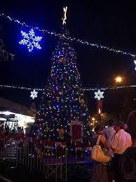 Christmas Decorations Shop Penrith by Penrith Christmas Tree Lighting Event Penrith Australia
