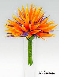 Pictures Flower Bouquets - best 25 simple wedding bouquets ideas on pinterest wedding