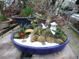 mini landscape garden christmas ideas best image libraries
