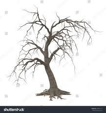 scary halloween white background spooky halloween tree long roots bare stock illustration 448923115