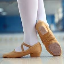 Comfortable Ballroom Dancing Shoes Free Shipping Professional Dance Shoes Comfortable Ballroom Latin