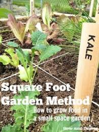 Metre To Square Feet Square Metre Gardening For Australia Deliciousness Pinterest