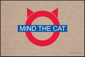 doormat funny mind the cat doormat funny doormats u2013 high cotton inc