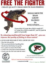 Wisconsin Dnr Lake Maps by Northwoods Bass Fishing Adventures Wisconsin Dnr Information