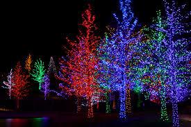 enjoy norwalk s 7th annual tree lighting celebration