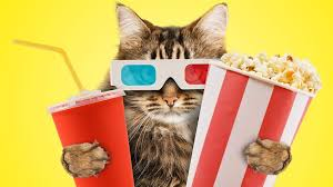 is video streaming greener than dvds grist