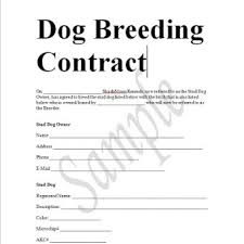 sample contracts contract templates business contracts