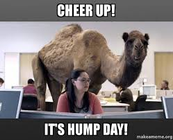 Happy Hump Day Memes - cheer up it s hump day happy hump day make a meme