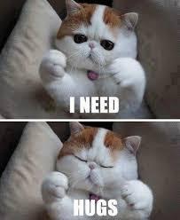 Give Me A Hug Meme - hug meme