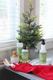easy ways smell christmas clean