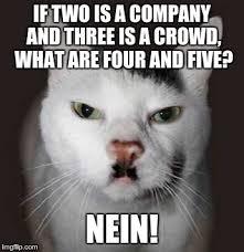 Cat Meme Maker - nazi cat meme generator imgflip