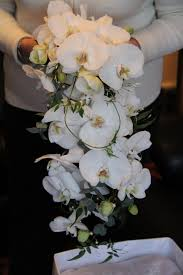Cascade Bouquet The Flower Magician Phalaenopsis U0026 Jasmine Cascade Wedding Bouquet