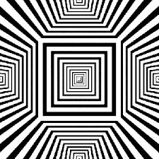 imagenes perronas mota imágenes que se mueven el movimiento en las imágenes es algo