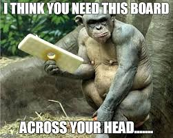 Chimp Meme - cinder the chimp imgflip