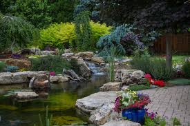 ndh aquascapes pond installation maintenance u0026 repair in