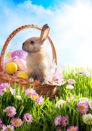 easter basket bunny easter basket decorated eggs and easter bunny stock photo image