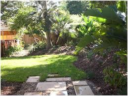 backyards trendy backyard vegetable gardening and top 10
