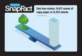 snapfact friday how much paper does one tree produce fujitsu