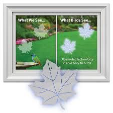 amazon com window alert maple leaf decal bird window alert