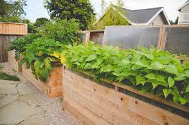 small raised bed vegetable garden outdoor furniture find out