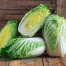 cabbage china china cabbage gardens alive