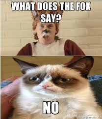 Meme Generator Grumpy Cat - fox and grumpy cat via meme generator haha pinterest grumpy