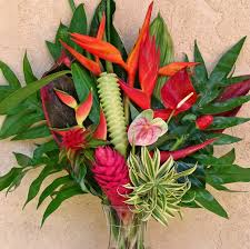 hawaiian holiday special a rainbow of beautiful colors u0026 edible