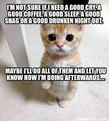 Not Sure If Meme Generator - meme creator i m not sure if i need a good cry a good coffee a