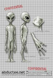 types of grays gray aliens truth control
