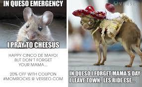 Memes 5 De Mayo - sulali cinco de mayo meme