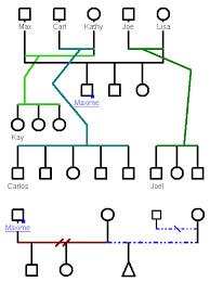 rules to build genograms genopro