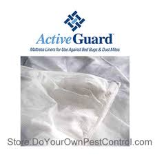 What Do Exterminators Use To Kill Bed Bugs How To Get Rid Of Bed Bugs How To Kill Bed Bugs