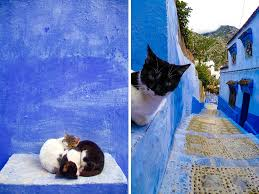 Morocco Blue City by Moroccan Blue Paint Finding Peace Within Chefchaouen
