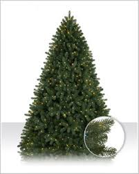 royal douglas fir artificial tree tree market