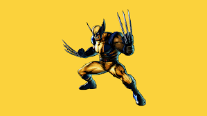 Wolverine 8k Ultra Hd Wallpaper And Background 9900x5569 Id 466187