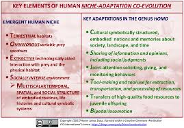 the human niche u2013 an overview the biocultural evolution blog