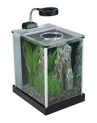 amazon com fluval spec desktop glass aquarium 2 gallon