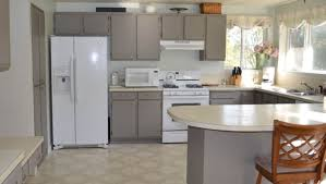 painting kitchen cabinet doors cabinet prodigious paint kitchen cabinets white or cream ideal