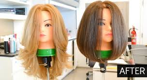 hairstyles to do on manikin how to cut mannequins hair hair mannequins