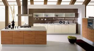 Kitchen Cabinet For Less Uncategorized Contemporary New Kitchens For Less Stimulating