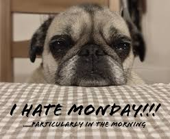 I Hate Mondays Meme - i hate monday dogs know your meme
