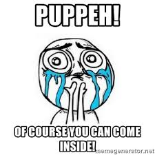 Of Course You Can Meme - puppeh of course you can come inside crying face meme generator