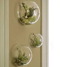 set of 3 bubble terrariums glass wall vase wall mounted planters