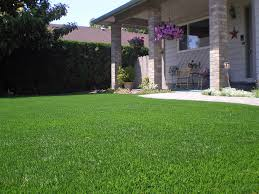 artificial grass whetstone arizona landscaping business front yard