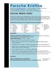 Social Media Resume Sample by Updated Social Media Resume