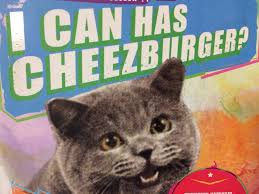 I Can Has Cheezburger Meme - cat memes i can has cheezburger cat memes pinterest memes